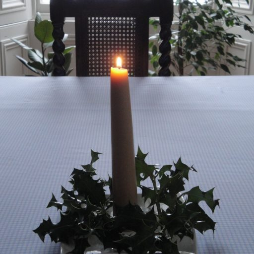 Holly. Beeswax. Candle. Light. Evergreen. The Holly Tree Tales.  (c) Holly M Maxwell Boydell  www.TheHollyTreeTales.com
