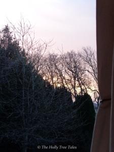 Morning light in Winter