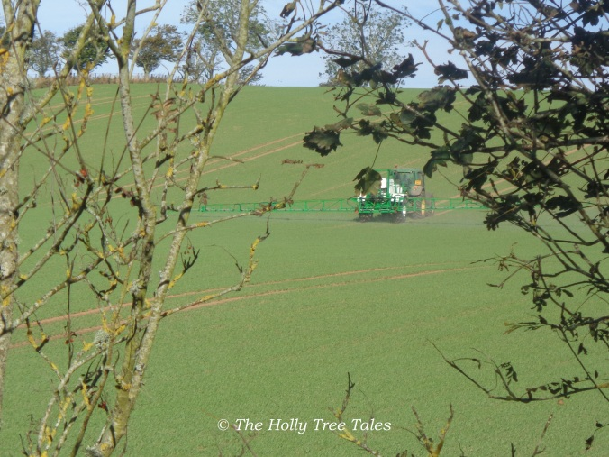 September 2014, Autumn - RoundUp (glyphosate) being sprayed on the field beside our house - we had not yet closed our kitchen windows, nor are we protected from this toxic spraying in any event anyway.