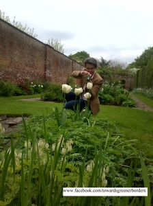 The Author, photographing Summer beauty in an organically managed garden in England.