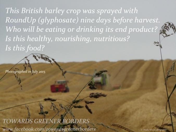 DSC08802 - Barley crop harvest - TGB + hmb signed