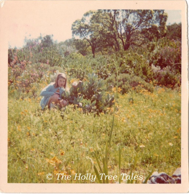 Holly amongst plants enroute Cape Town perhaps - around 1973 - THTT signed