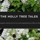 Stories and philosophy, borne out of my own experiences of life on three continents. www.TheHollyTreeTales.com ♥
