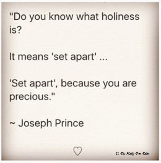 Do you know what Holiness is - Joseph Prince Quote - Holly iphone - 11 November 2017 - THTT signed