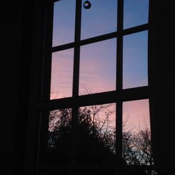 Monday 11 February 2019. Legerwood. Pink + Blue Morning. Light.
