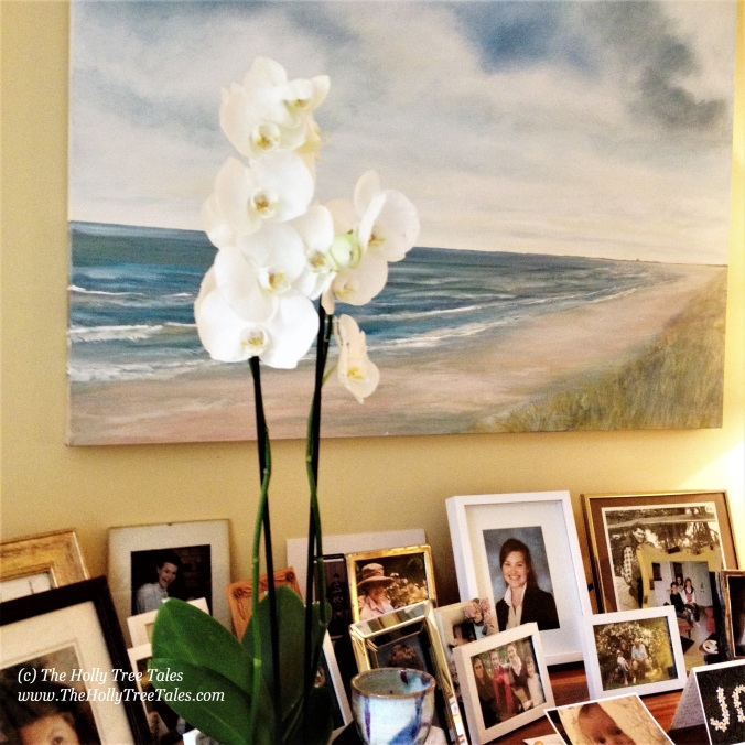 Home. Hygge. Life As Art. Calm. Interiors. (c) Holly M Maxwell Boydell - www.TheHollyTreeTales.com